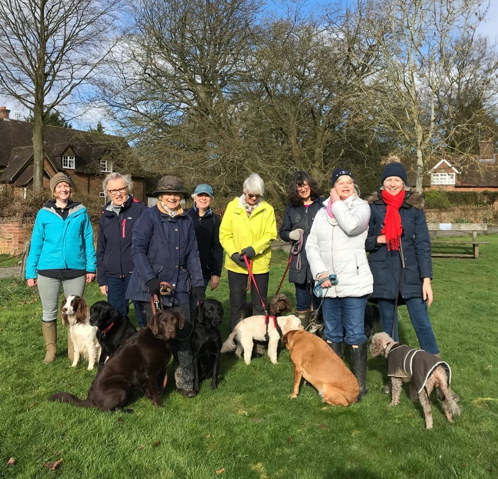 The walking group and dogs