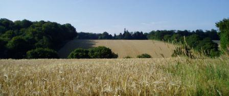 View over arable fields