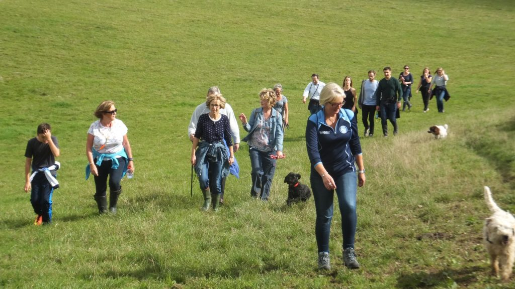 Lots of people and dogs climbing a hill for a sponsored dog walk to raise money for the Chilterns Dog Rescue Society
