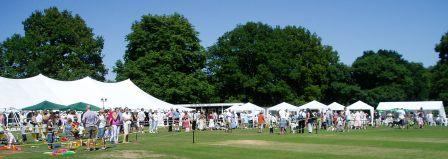 Panoramic view of The Lee Flower Show, showing the marquee and various stalls