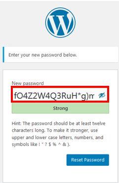 screenshot showing the password set/reset screen